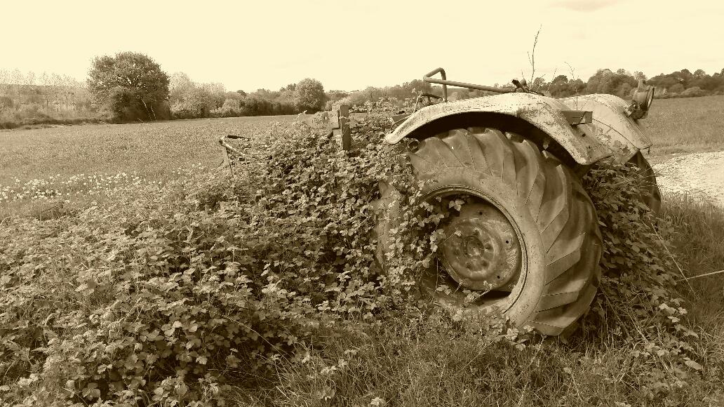 Témoignage. Vie et disparition d'un agriculteur breton.
