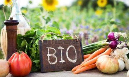 L'Agriculture Biologique Française en danger